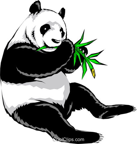 Panda bear Royalty Free Vector Clip Art illustration anim0239