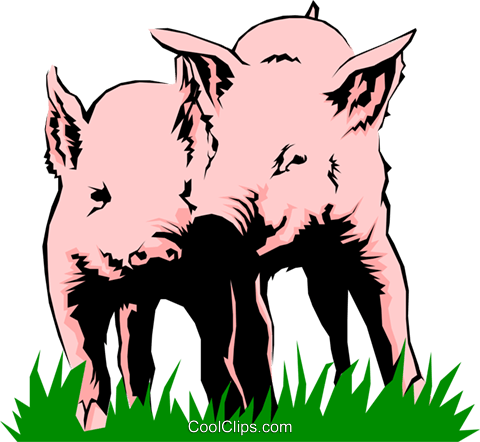 Pigs playing Royalty Free Vector Clip Art illustration anim0243
