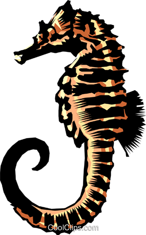 Sea horse Royalty Free Vector Clip Art illustration anim0250