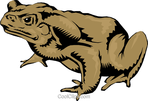 Toad Royalty Free Vector Clip Art illustration anim0260