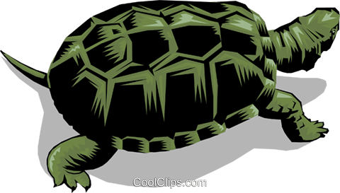 Turtle Royalty Free Vector Clip Art illustration anim0264