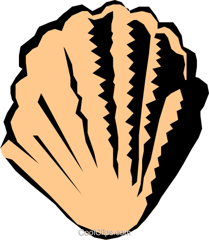 Scallop shell Royalty Free Vector Clip Art illustration anim0567