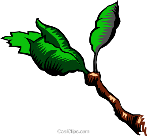 Leaves Royalty Free Vector Clip Art illustration natu0207