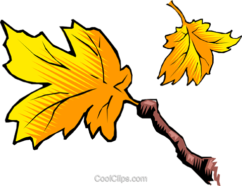 Leaves and branch Royalty Free Vector Clip Art illustration natu0209