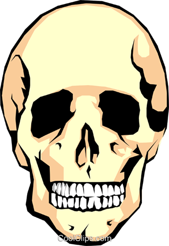 Human skull Royalty Free Vector Clip Art illustration medi0042