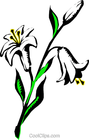Lilies Royalty Free Vector Clip Art illustration natu0225