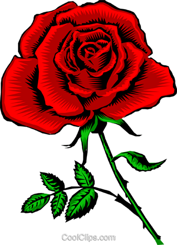 Red Rose Royalty Free Vector Clip Art illustration natu0226