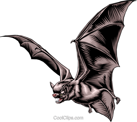 Vampire bat Royalty Free Vector Clip Art illustration anim0267