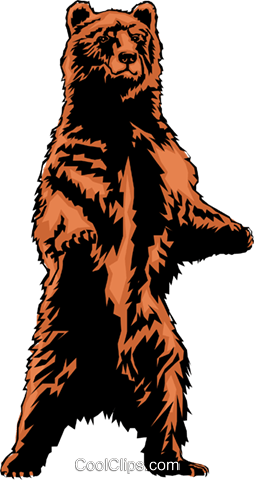 Grizzly bear Royalty Free Vector Clip Art illustration anim0268