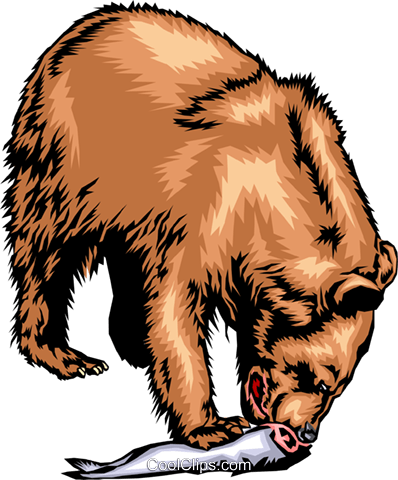 Grizzly bear eating a salmon Royalty Free Vector Clip Art illustration anim0269