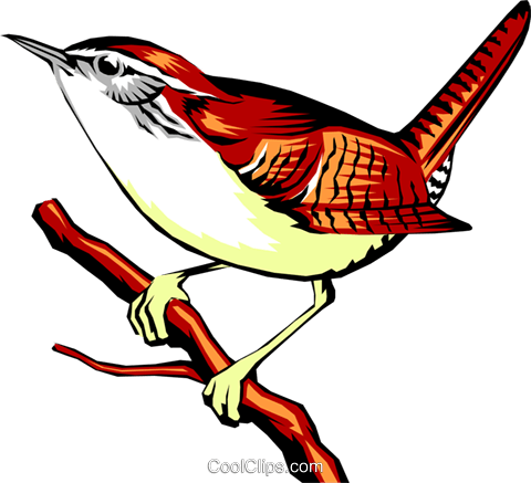 Carolina wren Royalty Free Vector Clip Art illustration anim0281