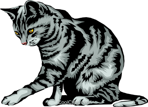 Domestic cat Royalty Free Vector Clip Art illustration anim0285