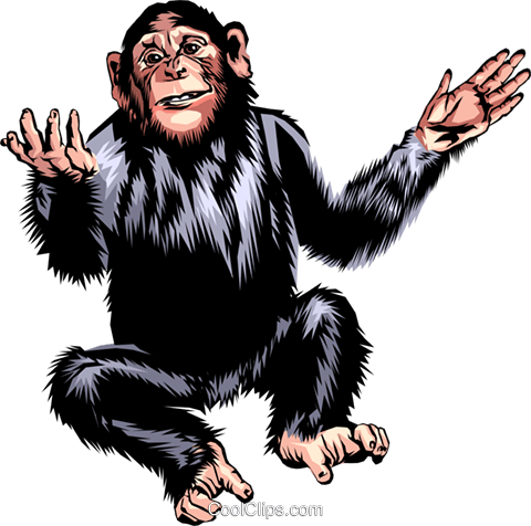 Chimpanzee Royalty Free Vector Clip Art illustration anim0286