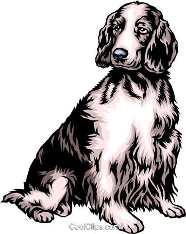 Dog Royalty Free Vector Clip Art illustration anim0310