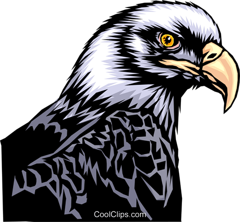 Eagle Royalty Free Vector Clip Art illustration anim0321