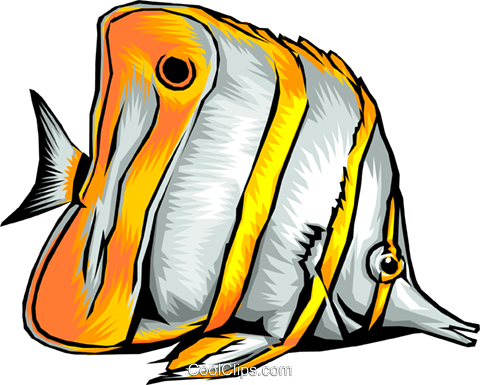 Tropical fish Royalty Free Vector Clip Art illustration anim0326