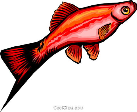 Fish Royalty Free Vector Clip Art illustration anim0328