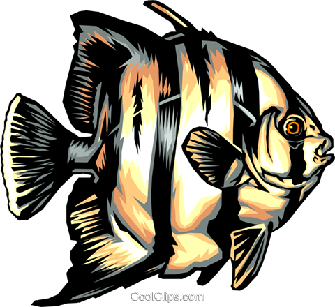 Tropical fish Royalty Free Vector Clip Art illustration anim0329
