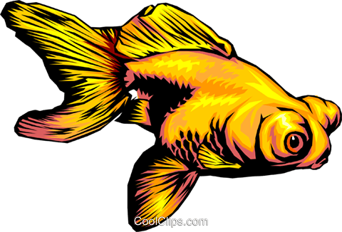Goldfish Royalty Free Vector Clip Art illustration anim0330