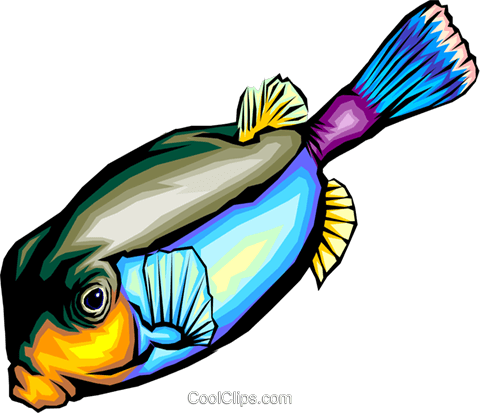 Tropical fish Royalty Free Vector Clip Art illustration anim0333