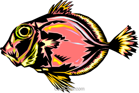 Tropical fish Royalty Free Vector Clip Art illustration anim0334