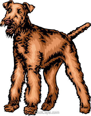 Terrier dog Royalty Free Vector Clip Art illustration anim0335