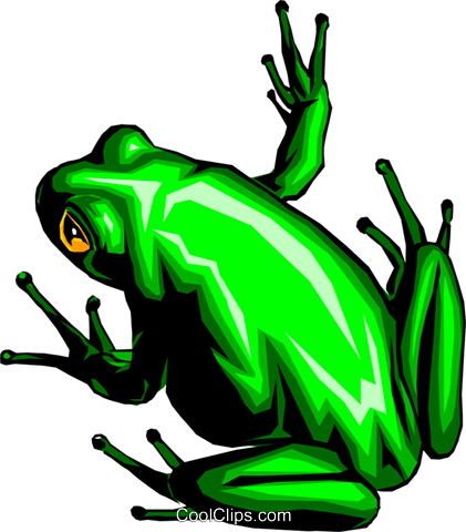 frog Royalty Free Vector Clip Art illustration anim0336