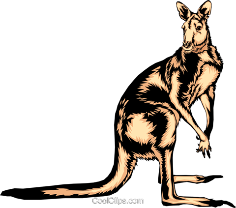 Kangaroo Royalty Free Vector Clip Art illustration anim0344