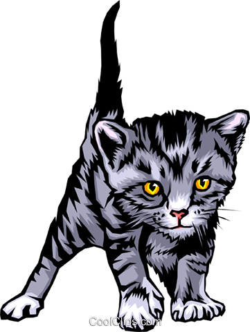 Kitten Royalty Free Vector Clip Art illustration anim0345