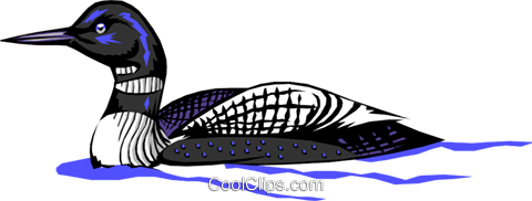 Loon Royalty Free Vector Clip Art illustration anim0349