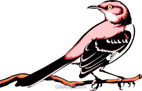 Mocking bird Royalty Free Vector Clip Art illustration anim0351