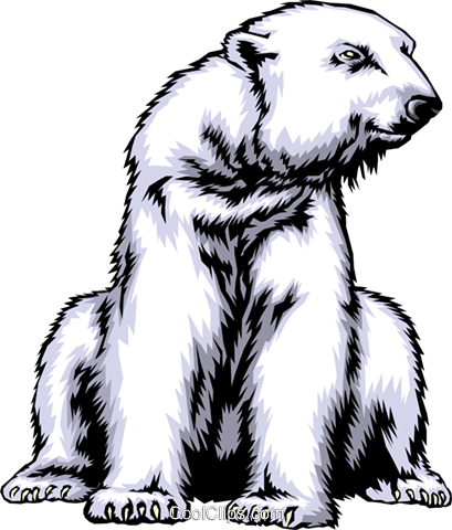 Polar bear Royalty Free Vector Clip Art illustration anim0357