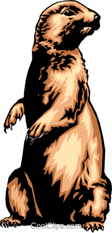Gopher Royalty Free Vector Clip Art illustration anim0358