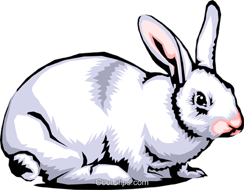 Rabbit Royalty Free Vector Clip Art illustration anim0359