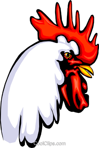 Rooster Royalty Free Vector Clip Art illustration anim0363
