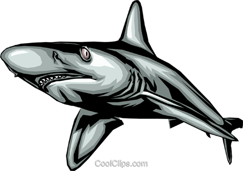 Shark Royalty Free Vector Clip Art illustration anim0366