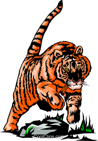 Tiger Royalty Free Vector Clip Art illustration anim0371