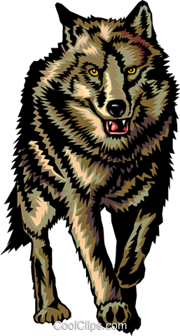 Wolf Royalty Free Vector Clip Art illustration anim0377