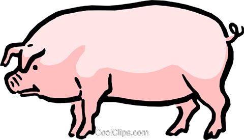 Cartoon Pig Royalty Free Vector Clip Art illustration anim0576