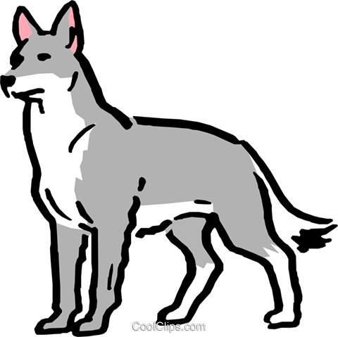 Cartoon wolf Royalty Free Vector Clip Art illustration anim0582