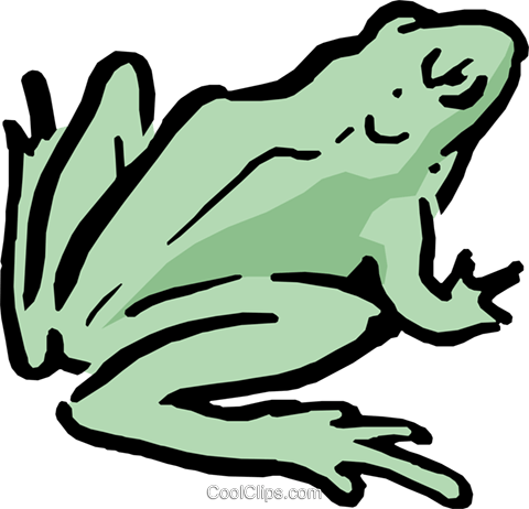 Cartoon frog Royalty Free Vector Clip Art illustration anim0590