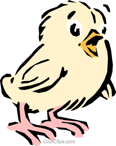 Cartoon chick Royalty Free Vector Clip Art illustration anim0609