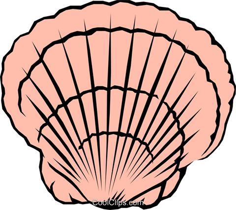 Scallop shell Royalty Free Vector Clip Art illustration anim0616