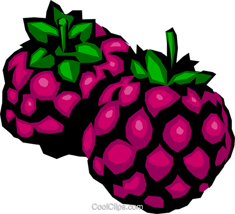 Blackberries Royalty Free Vector Clip Art illustration food0176