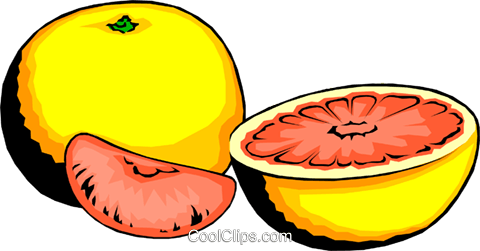 Grapefruit and slices Royalty Free Vector Clip Art illustration food0190