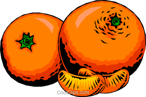 Two Oranges Royalty Free Vector Clip Art illustration food0198