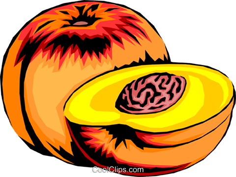 Sliced peaches Royalty Free Vector Clip Art illustration food0199