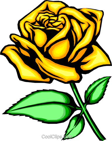 Yellow rose Royalty Free Vector Clip Art illustration natu0046