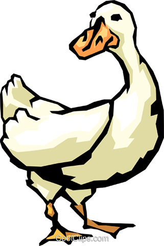 Duck Royalty Free Vector Clip Art illustration anim0478