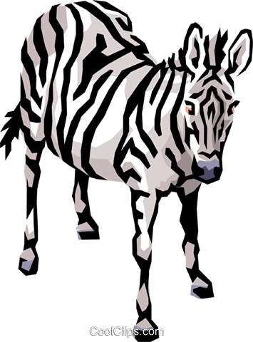 Zebra Royalty Free Vector Clip Art illustration anim0482